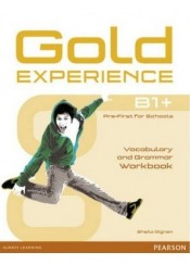 GOLD EXPERIENCE B+ WORKBOOK
